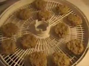 Raw Falafel