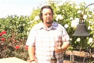 2006 Sonoma Carneros Merlot Wine Review