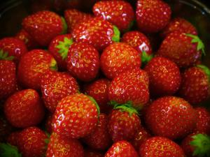N.C. Strawberry Project Focuses on Research and Culinary Education