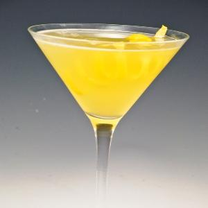 Fabulous Citrus Martini