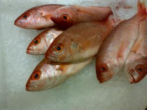 Health effects of eating rotten fish