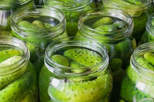 Home Made Dill Pickles