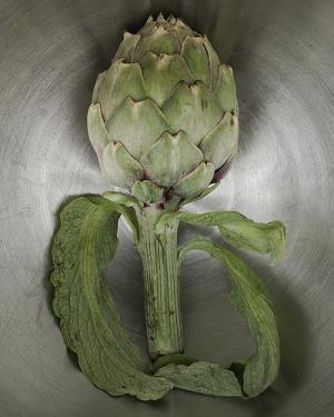 What is an artichoke