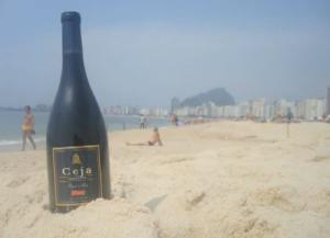 Dalia And Ceja Pinot Noir'S South American Adventures