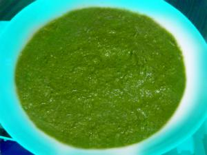 Hot Mint and Coriander Chutney