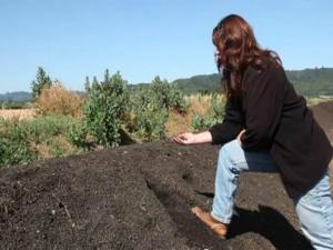 How To Compost: Tips, Learnings From Our Vineyard Manager