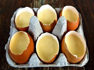 Vanilla Custard Served In Eggshells