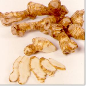 Uses and benefits galangal powder