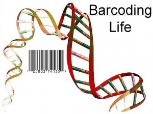 Barcode Of Life Unlocked
