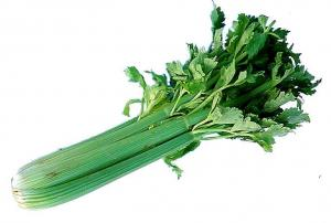 Celery is also known as vegetable viagra.