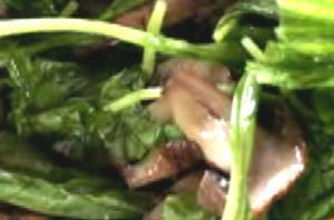 Grilled Portobello Arugula Salad