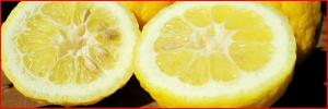 Recipes with Yuja (Asian Citron)