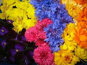 edible flowers as food
