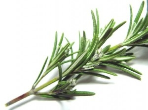 Use rosemary tea for hair growth