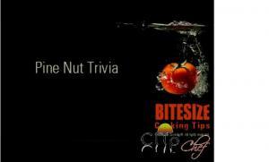 Pinenuts Trivia