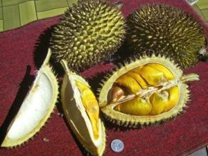 How to Peel a Durian