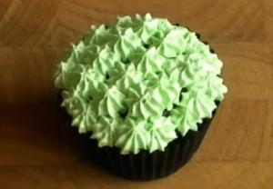 Chocolate And Mint Cupcake