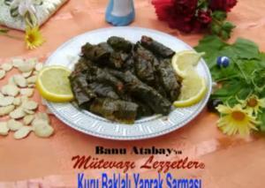 Turkish Kuru Baklali Yaprak Sarmasi