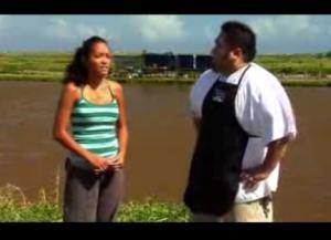 Tips For Shrimp And Prawn Farming