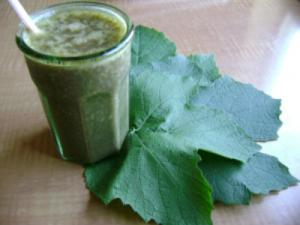 Fruity Smoothie with Grape Leaves