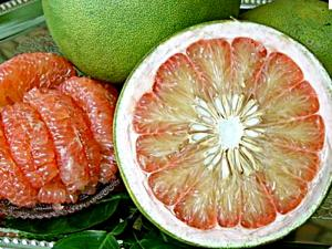 Kevin Digs Into a Pomelo - The World's Largest Citrus Fruit