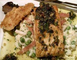 Salmon Scallop