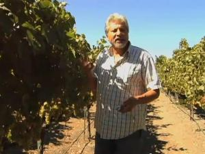 Chardonnay Update With Winegrower Armando Ceja
