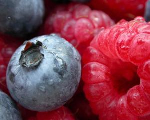 Very Berry Whey Protein Shake