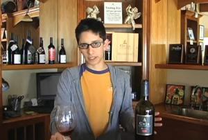 2006 Napa Valley Vino De Casa Red Blend Wine Review