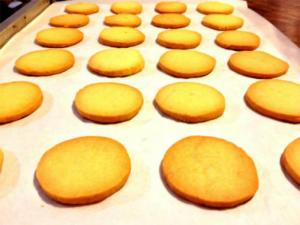 Plain Salt Biscuits