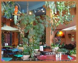 Restaurant view in Tucson