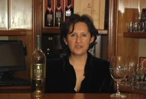 2007 Sonoma Coast Sauvignon Blanc Wine Review