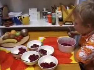 Grandma's special Berry Quark