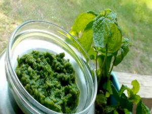 Pudina Chutney (Mint Pesto) Fudino Chutney