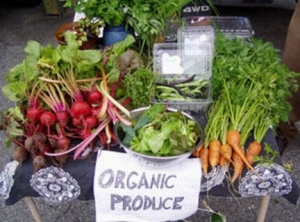 UK govt failed to support organic farming