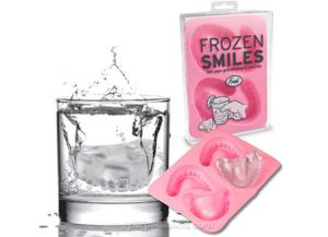 Funny Gadget : Frozen Smiles Ice Cube Tray