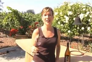 2006 Sonoma Carneros Pinot Noir Wine Review
