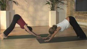 Downward Dog And Puppy Dog Poses