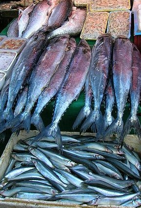 Fish and fish oil are beneficial to the body