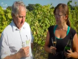 Gusbourne Estate - English Wine Harvest