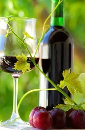 organic wine, beer and spirits are a healthy way to indulge in alcoholic beverages