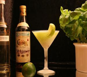 A Basic Daiquiri