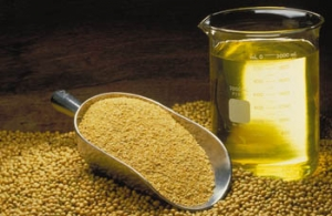 oil of soybean
