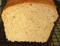 A freshly baked bread roll