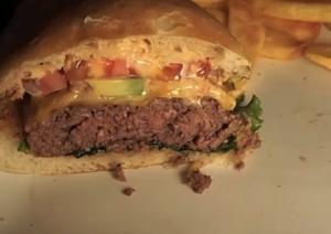 Tasty Venison Burger
