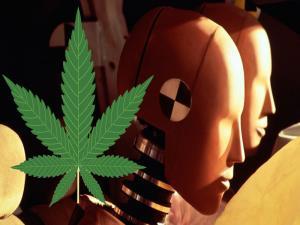 Thelip Can Marijuana Save