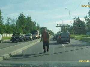 Russian Drivers Stop Traffic To Help Ducklings