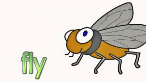 Insects Talking Flashcards