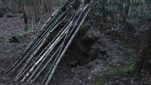 How To Make A Shelter In A Forest 10042640 By Videojug