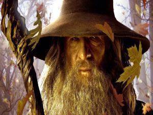 Gandalf For President